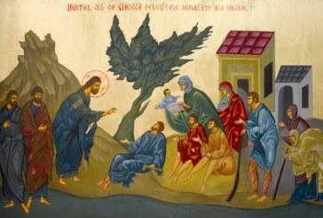 <span style='color:#B00000  ;font-size:14px;'>Catehism. ABC-ul credinţei (Pr. Cătălin Pălimaru)</span> <br> Biserica şi îngrijirea bolnavilor 1</p>