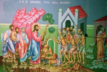 <span style='color:#B00000  ;font-size:14px;'>Ev. Luca 17, 12-19</span> <br> Pericopa Evanghelică – Duminica a 29-a după Rusalii</p>