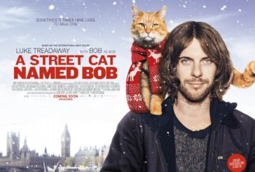 <span style='color:#B00000  ;font-size:14px;'>Filmul săptămânii</span> <br> A Street Cat Named Bob (Un motan pe nume Bob)</p>