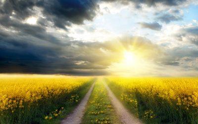 Savuraţi viaţa duhovnicească. Nimic nu e mai dulce decât ea.