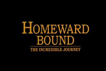 <span style='color:#B00000  ;font-size:14px;'>Filmul săptămânii</span> <br> Homeward Bound: The Incredible Journey (Călătoria incredibilă)</p>