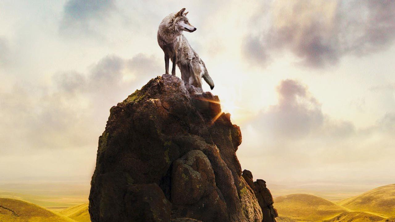 Wolf Totem (Totemul lupului)