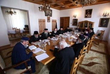 S-a întrunit Comisia teologică, liturgică şi didactică a Sfântului Sinod. Se lucrează la o ediţie îmbunătăţită a Liturghierului