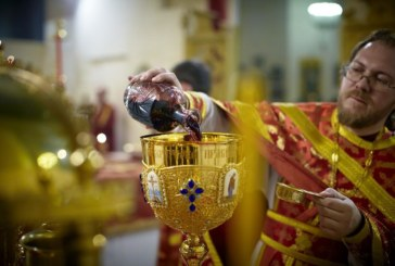 <span style='color:#B00000  ;font-size:14px;'>Catehism. ABC-ul credinţei (Pr. Cătălin Pălimaru)</span> <br> Sensul materiei în cultul ortodox 3</p>
