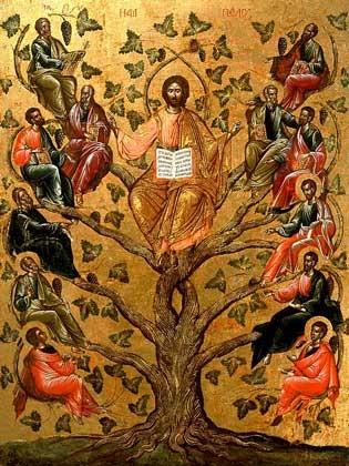 Agenda Ierarhilor din Mitropolia Clujului în Duminica dinaintea Nașterii Domnului și cu ocazia sărbătorilor de  Crăciun