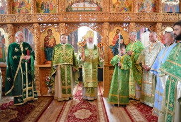Înaltpreasfințitul Părinte Andrei, de Florii în Parohia Mica, Protopopiatul Dej