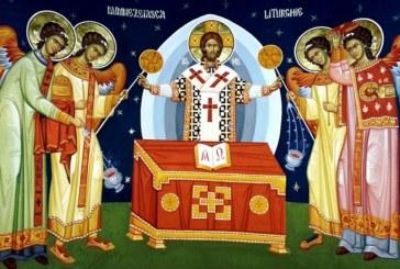 <span style='color:#B00000  ;font-size:14px;'>Catehism. ABC-ul credinţei (Pr. Cătălin Pălimaru)</span> <br> Preoția în Biserică 2</p>