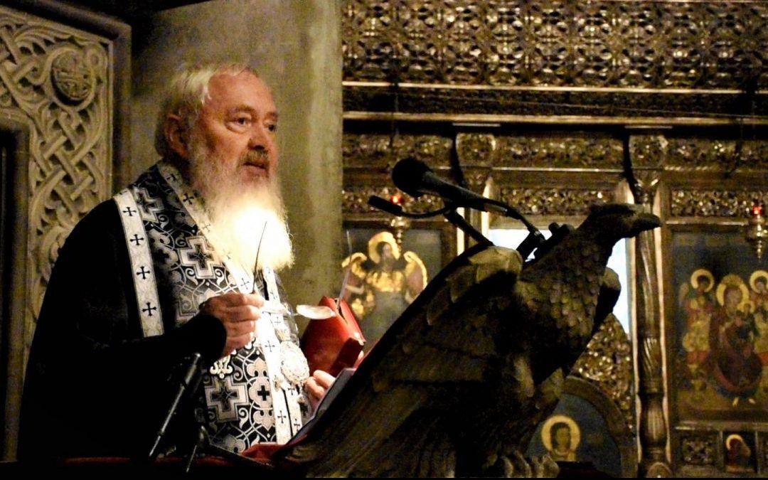 Cateheză ÎPS Andrei – Importanţa misiunii Maicii Domnului pentru mântuirea noastră – 15 martie 2020