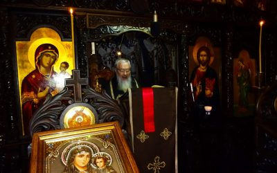 Mitropolitul Andrei – Predică la Denia din Sfânta și Marea Marți – 13 aprilie 2020