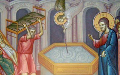 Agenda ierarhilor din Arhiepiscopia Clujului, în Duminica a 4-a după Paști