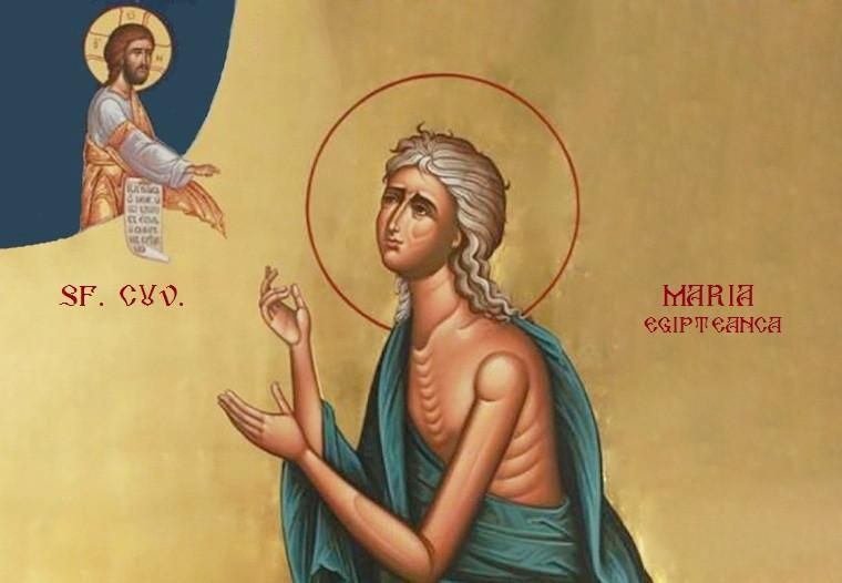 Agenda ierarhilor în Duminica a 5-a din Post (a Sfintei Cuvioase Maria Egipteanca)